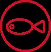 zebrafish service