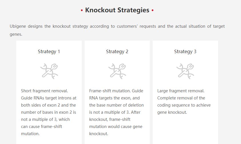 CRISPR/Cas9 knockout HEK293 cell line strategies